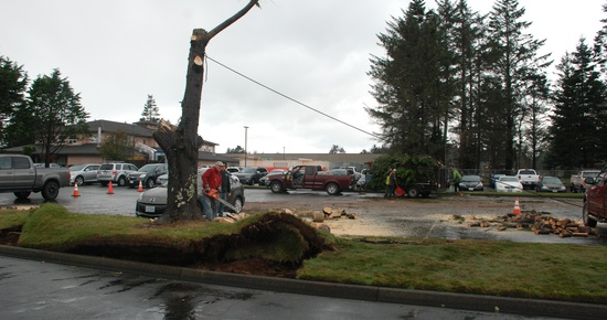 Del Norte Weathers Bomb Cyclone Fallout; Crescent City May